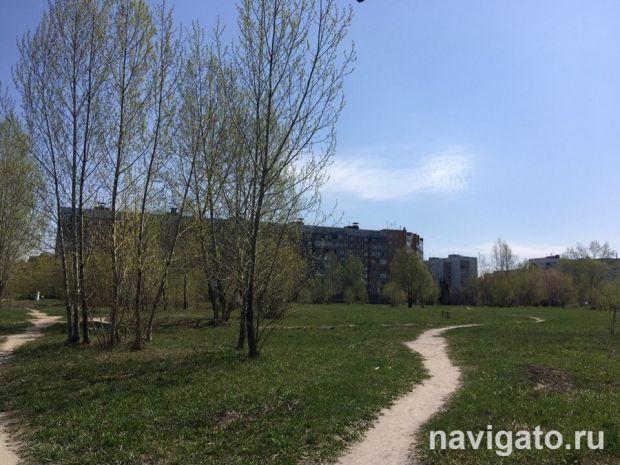 Общественники просят Геннадия Зюганова заступиться за сквер на Демакова
